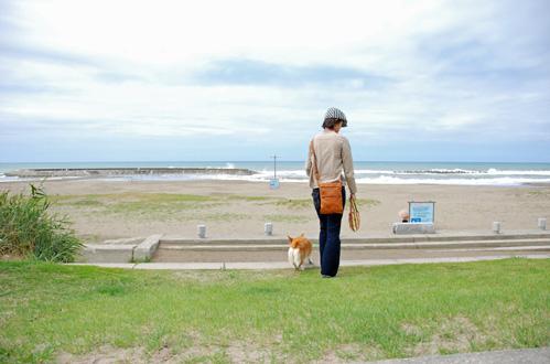 ハルあざらしさんの故郷、海がもうすぐだ