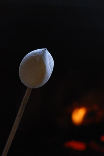 暖炉で焼く