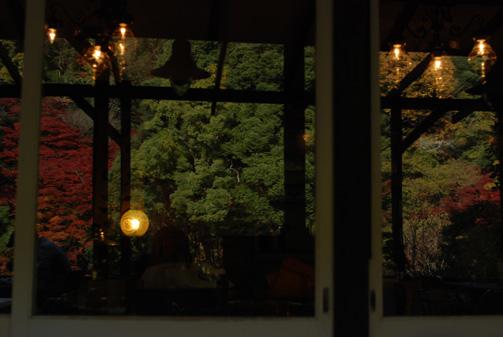 ガラスに映える紅葉