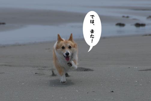 海にも行ってきました